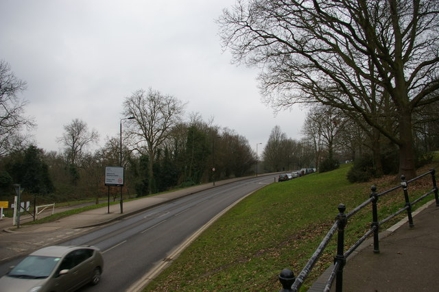 South Terrace: road towards Alexandra Palace from the east