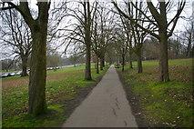 TQ3090 : Path through Alexandra Park by Christopher Hilton