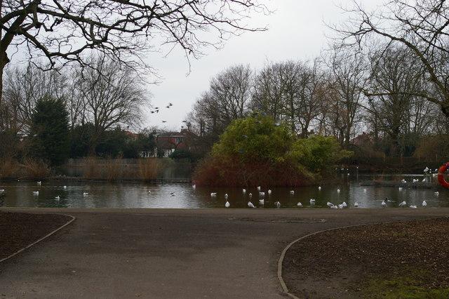 The Lake, Alexandra Park