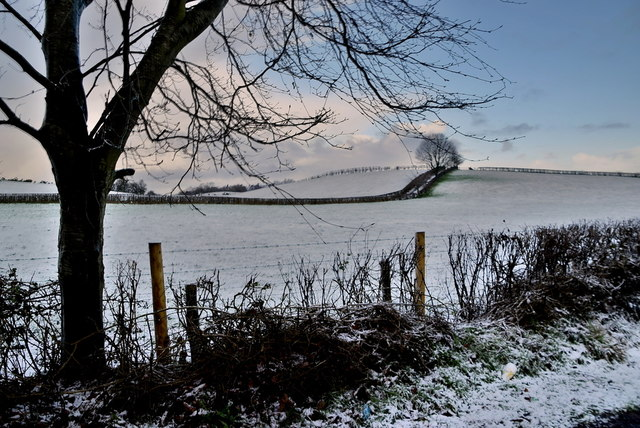 Wintry at Moylagh