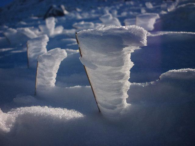 Snow feathers, Ingleborough