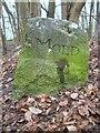 SJ2062 : Old Boundary Marker in Loggerheads Country Park by John S Turner