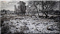 SE8791 : Bridestone Griff by Mick Garratt