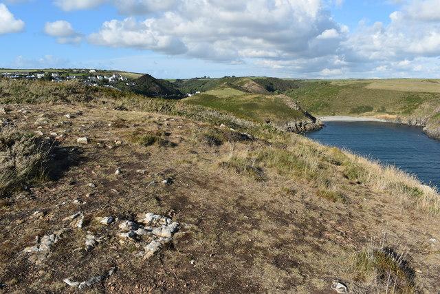 Coastal grassland at Sterling Hock