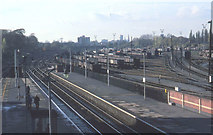 TQ2081 : Acton Main Line station 1980 with marshalling yard by David Hawgood