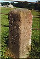 NZ0284 : Old Milestone by the B6342, by IA Davison