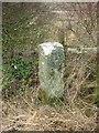 NZ0267 : Old Milestone by the B6321, Kip Hill, Shildon by IA Davison