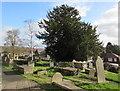 ST1789 : Yew in St Barrwg's churchyard, Bedwas by Jaggery