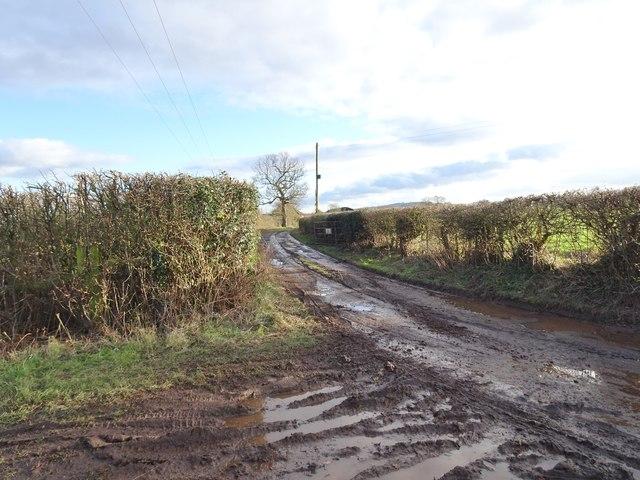 Hay Farm Track