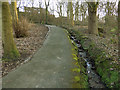 SE3028 : Path to the fish pond in Middleton Park by Stephen Craven