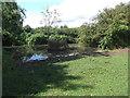 SP0849 : Small pond near Cleeve Prior by Eirian Evans