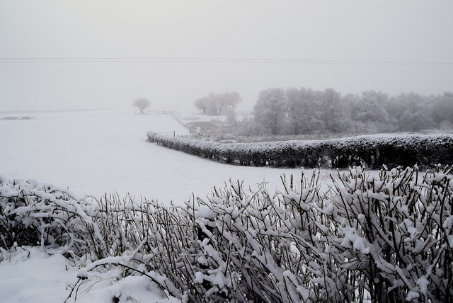 Wintry at Faccary