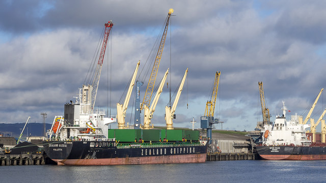 The 'Zealand Alexia' at Belfast