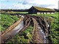 SO6641 : Farm building by Philip Halling