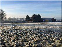 SP6989 : Frosty field view by Dave Thompson
