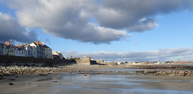 The foreshore at Newcastle at Low Water