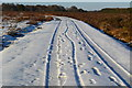 SU2307 : Snowy track north from Blackensford Hill by David Martin