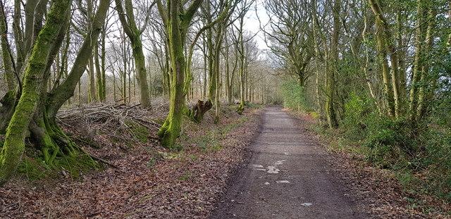 Ridge Top Lane
