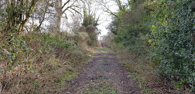 Old Lane at Stoner Hill