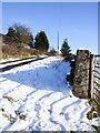 NZ1137 : Snow beside road near Thornley by Trevor Littlewood