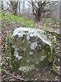 SJ1962 : Old Boundary Marker in Loggerheads Country Park by John S Turner