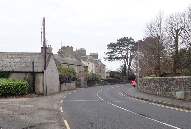 Victorian houses on the south side of Blackrock