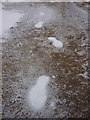 NY4412 : Ghostly footprints on Kidsty Pike? by Karl and Ali