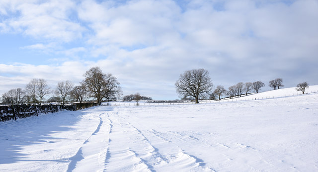 Snowed field south of Thornley