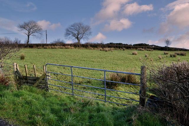 Gate and field, Eskeradooey