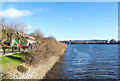 NZ2263 : Northern shore of River Tyne at Elswick by Trevor Littlewood