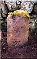 NT4437 : Old Milestone by the B710, east of Whytbank Tower, Caddonfoot by Milestone Society