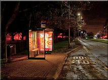 SJ9125 : Bus Shelter on Stone Road by David Dixon