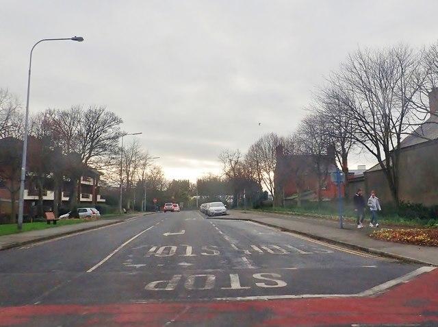 Jocelyn Drive viewed from Jocelyn  Street