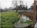 TL8093 : Stream beside Mundford to Swaffham road by David Pashley