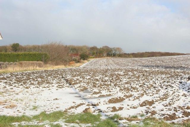 Ploughed field, Ellington