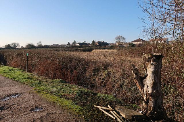 Open ground by Little Downham