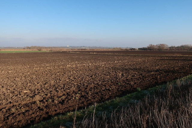 Field by Coffue Drove