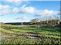NZ1760 : Waterlogged field near to Low Thornley by Trevor Littlewood