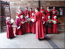 SO8554 : Singers, Worcester Cathedral by Chris Allen