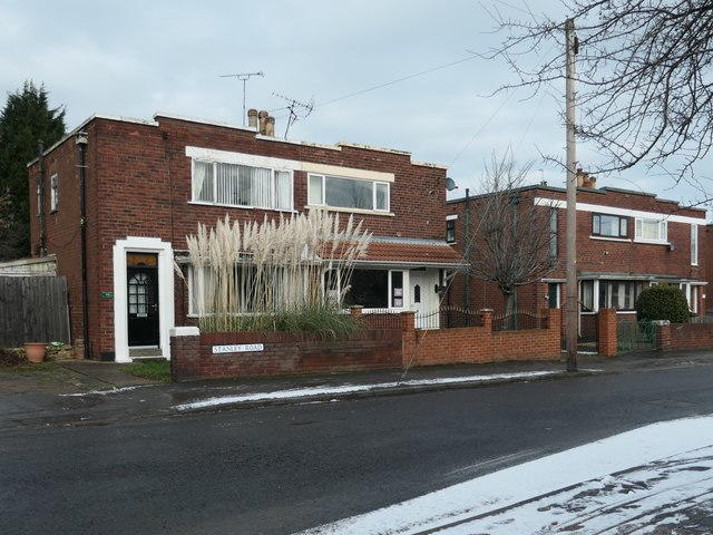 Pampas grass in a Stanley Road front garden, Doncaster