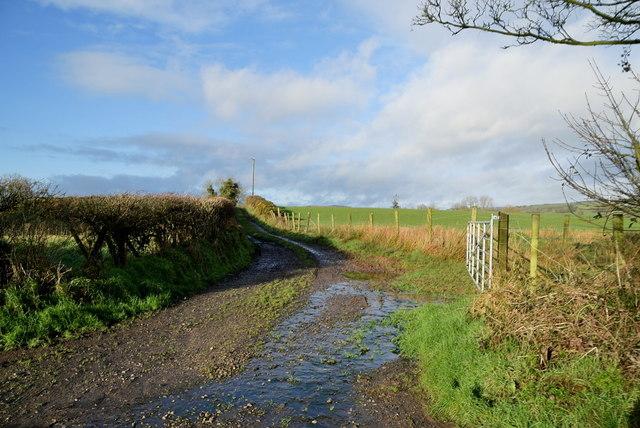 Rough lane, Keady
