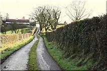 H5956 : Sess Road, Keady by Kenneth  Allen
