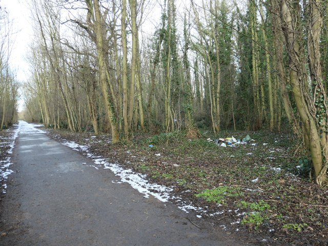 Fly-tipped rubbish in Hanging Woods