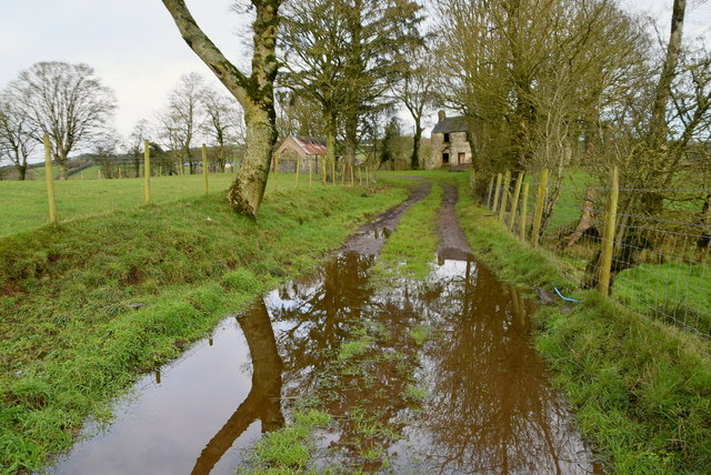 Flooded lane, Keady