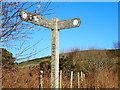 SJ1366 : Offa's Dyke Path Signpost by Eirian Evans