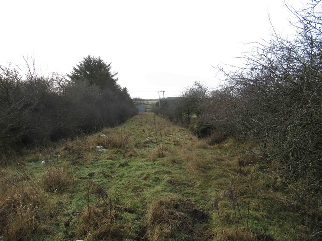 Bridleway towards Newton Low Steads Farm