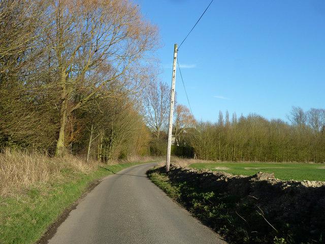 Lane towards Newland End