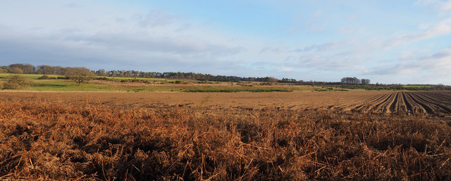 Panorama from edge of Coldharbour Wood