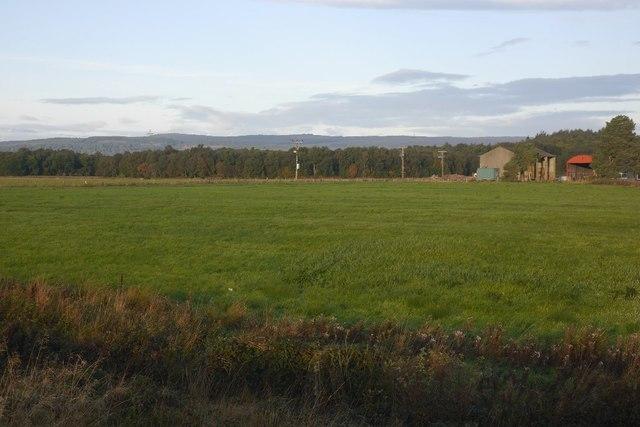 Field, Burnhead