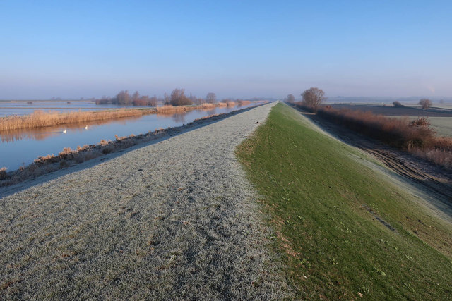 Frost on Hundred Foot Bank